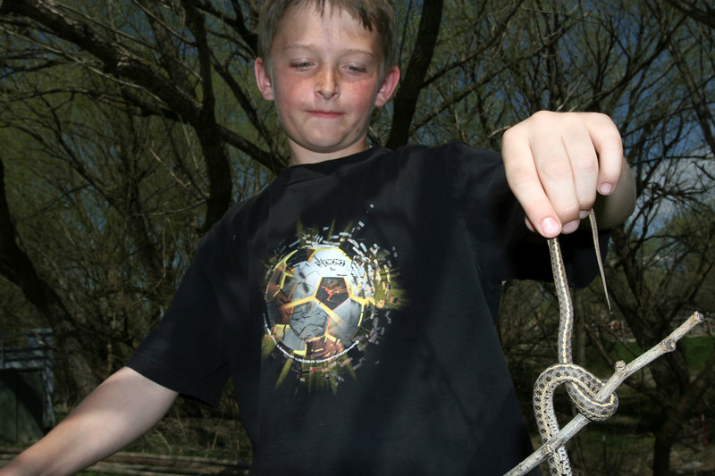 Some kids decided to take matters into their own hands and went down by the river to catch wild water snakes.
