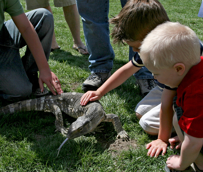 This large monitor lizard kept these young boys enthralled for a long time.
