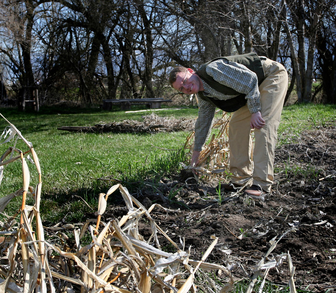Matt is clearing out the old sorghum as he readies the garden.