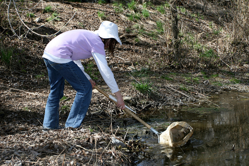 A visitor scoops young bugs from Rendezvous Creek as part of a nature walk held by Stokes Nature Center.