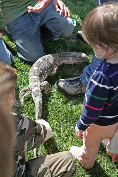 Reptile Rescue came from Salt Lake City to show that reptiles need love too!