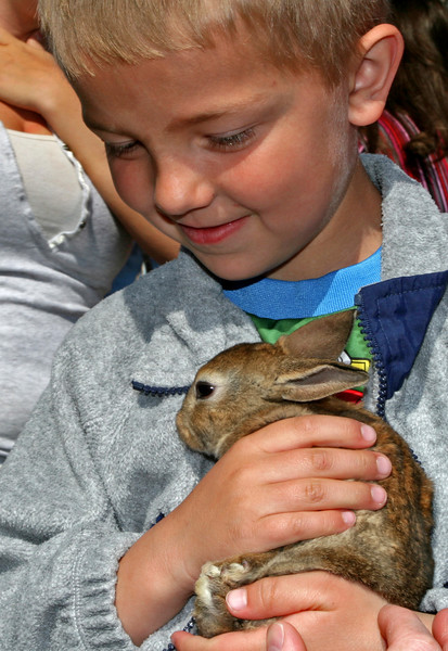 This boy couldn't help smiling at the touch of this young rabbit.