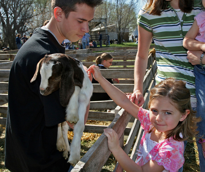 Petting the animals is always fun at Baby Animal Days!