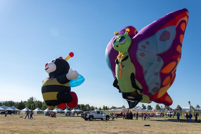 Reno-2013-Balloon-7790