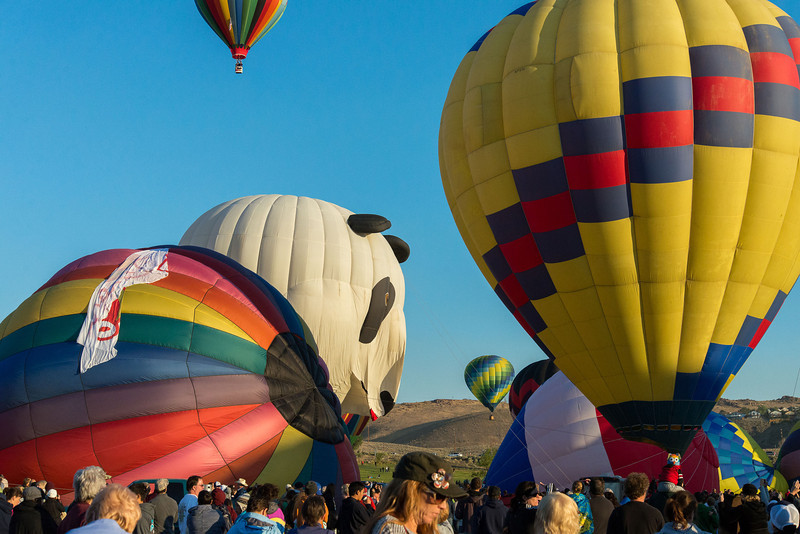 Reno-2013-Balloon-7908