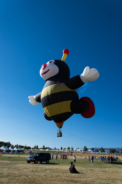 Reno-2013-Balloon-7772