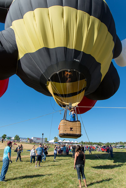 Reno-2013-Balloon-7754