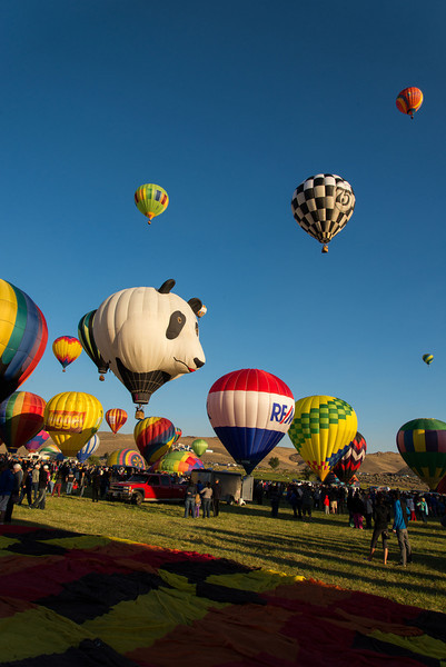 Reno-2013-Balloon-7926