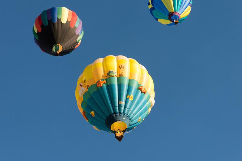 Reno-2013-Balloon-7972