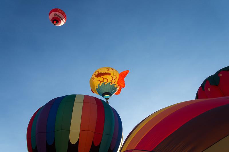 Reno-2013-Balloon-7943