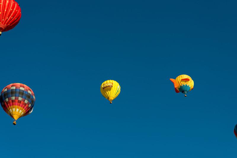 Reno-2013-Balloon-7979