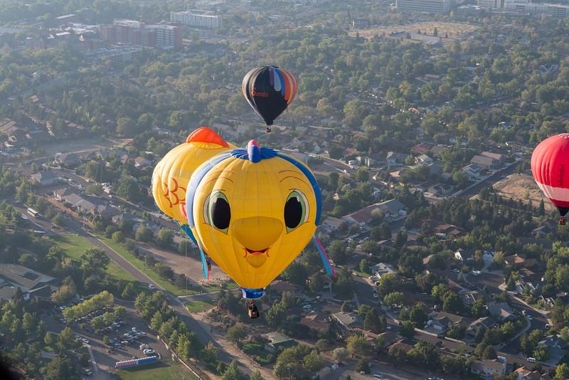 Reno-2013-Balloon-8209