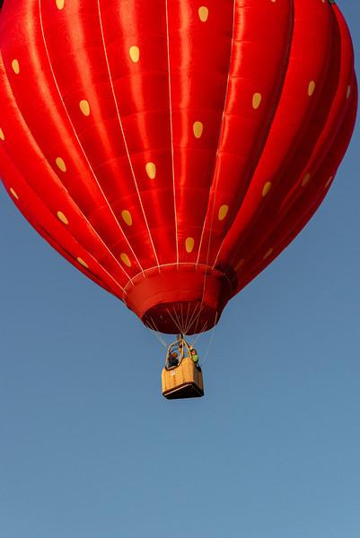 Reno-2013-Balloon-8135