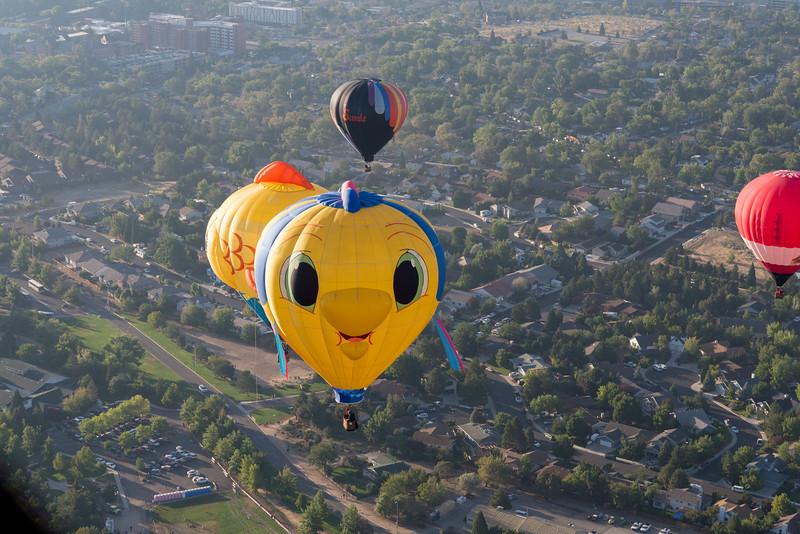 Reno-2013-Balloon-8208