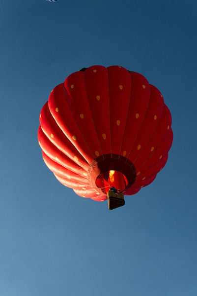 Reno-2013-Balloon-7961