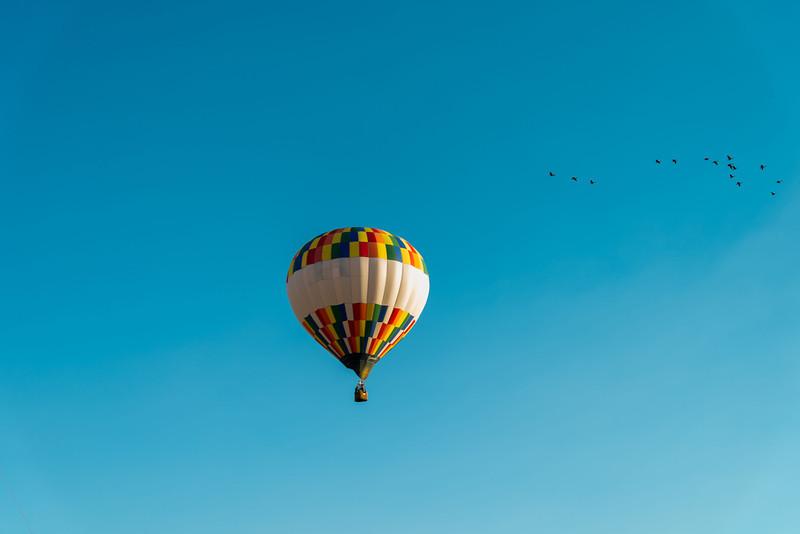 Reno-2013-Balloon-7906