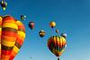 Reno-2013-Balloon-7975