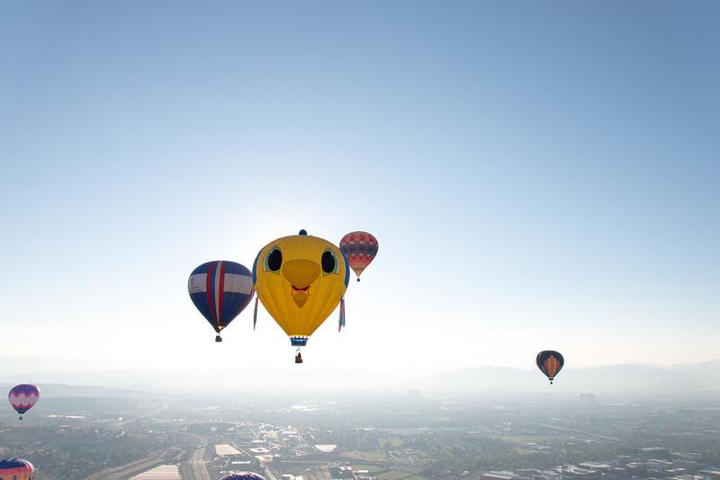 Reno-2013-Balloon-8217