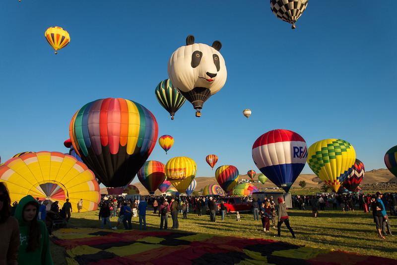 Reno-2013-Balloon-7928