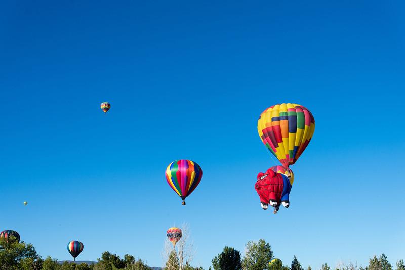 Reno-2013-Balloon-7686