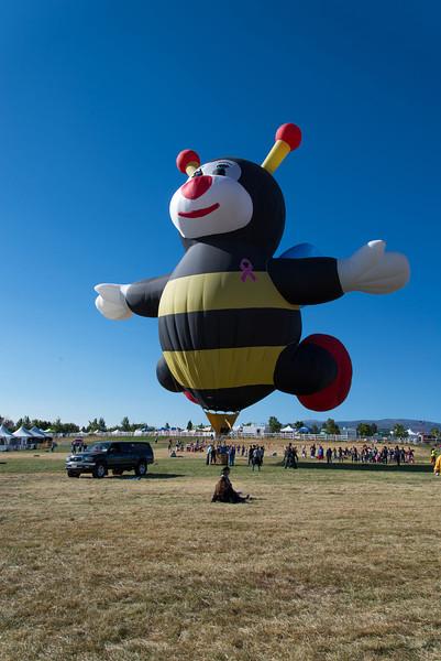 Reno-2013-Balloon-7769