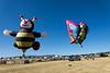 Reno-2013-Balloon-7805