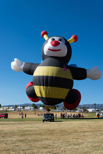 Reno-2013-Balloon-7800