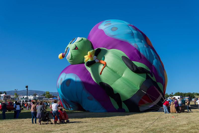 Reno-2013-Balloon-7776