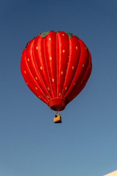 Reno-2013-Balloon-8136