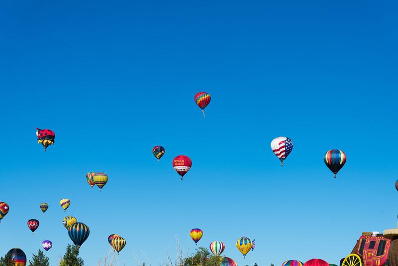 Reno-2013-Balloon-7744