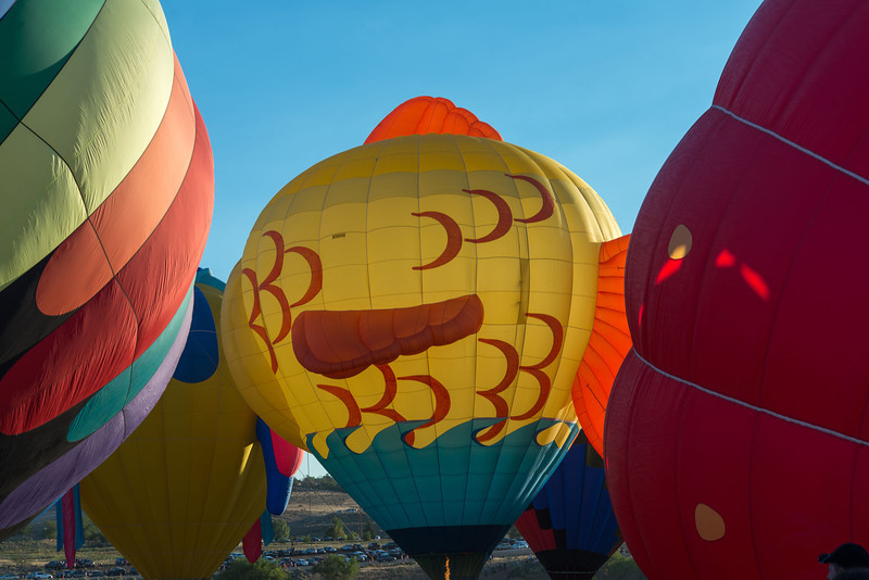 Reno-2013-Balloon-7920