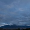 Sandia Mountains and last Dawn Patrol balloon.