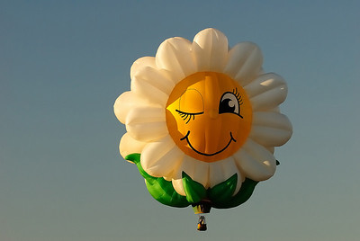 2009 Albuquerque Balloon Fiesta