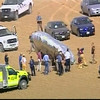 In this image rendered from video and released by KMGH-TV in Denver, a balloon is seen moments after landing in Colorado, near Fort Collins Thursday, Oct. 15, 2009. No one was found in the balloon. (AP Photo/KMGH-TV ) MANDATORY CREDIT; NO SALES