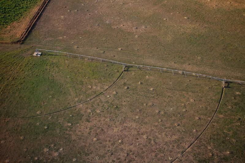 Prairie dog village and irrigation equipment