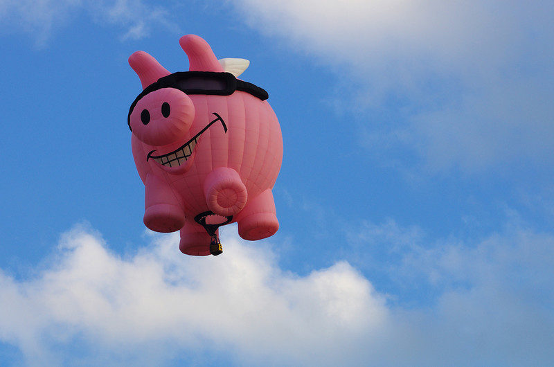 Well... pigs fly...