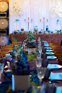 2022_d810a_Gilden_Regale_Winery_Los_Gatos_Mitzvah_Photography