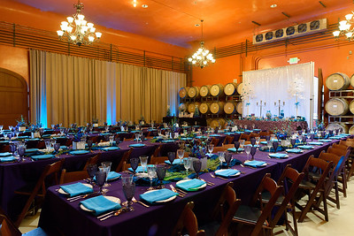 7766_d800b_Gilden_Regale_Winery_Los_Gatos_Mitzvah_Photography