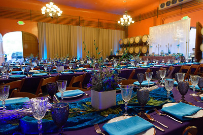 7767_d800b_Gilden_Regale_Winery_Los_Gatos_Mitzvah_Photography