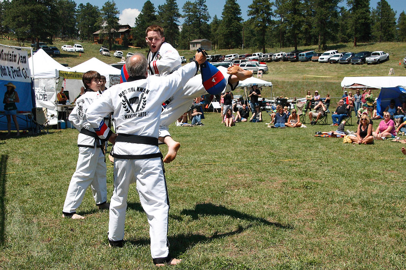 Martial Arts Demo[1]12.JPG