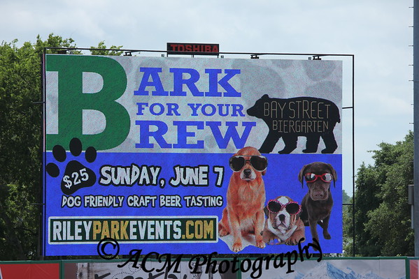 Bark for your Brew 2015