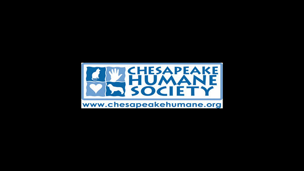 Chesapeake Humane Society's 16th Annual Bark in the Park, 5k Doggy Dash & 1-mile Puppy Trot!