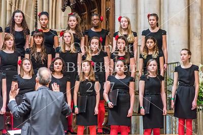 Barnardos Carol Concert 2017 Evening Bill Hiskett-96_filtered