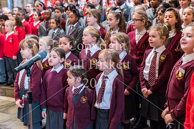 Barnardos Carol Concert 2017 Matinee Bill Hiskett-8_filtered