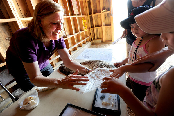 "Volunteer, Ann Moss shows Martina and Allegra Grenele how soft the wing of an owl is.<br /> Boulder County  hosted  Barnyard Critter Day  on June 24 at the Agricultural Heritage Center in Longmont, at 8348 Highway 66.<br /> For more photos and a video of the event, go to  <a href=""http://www.dailycamera.com"">http://www.dailycamera.com</a>.<br /> Cliff Grassmick / June 24, 2012"