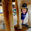 """Aidan Bohanon peeks throw the legs of a model horse in one of the barns.<br /> Boulder County  hosted  Barnyard Critter Day  on June 24 at the Agricultural Heritage Center in Longmont, at 8348 Highway 66.<br /> For more photos and a video of the event, go to  <a href=""""http://www.dailycamera.com"""">http://www.dailycamera.com</a>.<br /> Cliff Grassmick / June 24, 2012"""