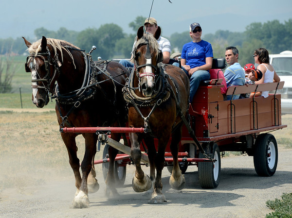"Rides with the Belgian draft horses was popular at Barnyard Critter Day on Sunday<br /> Boulder County  hosted  Barnyard Critter Day  on June 24 at the Agricultural Heritage Center in Longmont, at 8348 Highway 66.<br /> For more photos and a video of the event, go to  <a href=""http://www.dailycamera.com"">http://www.dailycamera.com</a>.<br /> Cliff Grassmick / June 24, 2012"