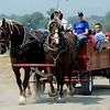 """Rides with the Belgian draft horses was popular at Barnyard Critter Day on Sunday<br /> Boulder County  hosted  Barnyard Critter Day  on June 24 at the Agricultural Heritage Center in Longmont, at 8348 Highway 66.<br /> For more photos and a video of the event, go to  <a href=""""http://www.dailycamera.com"""">http://www.dailycamera.com</a>.<br /> Cliff Grassmick / June 24, 2012"""