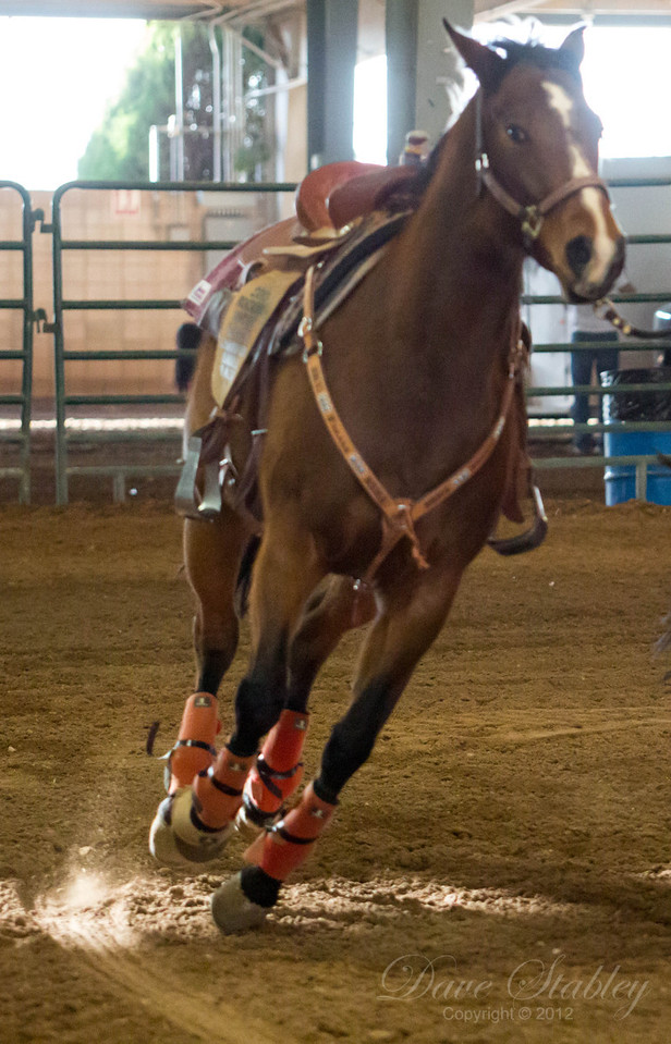 Barrel Racing-7070