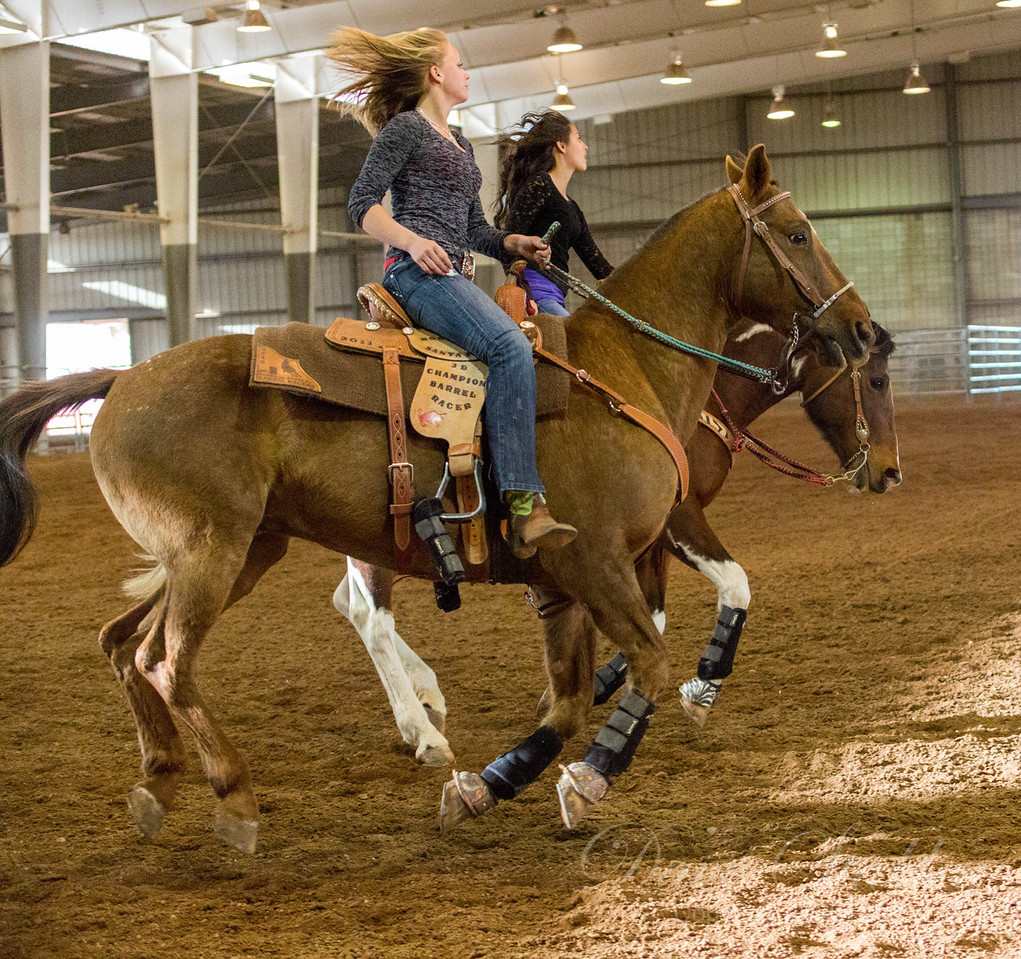 Barrel Racing-7109